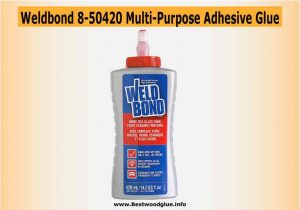 Weldbond 8-50420 Multi-Purpose Adhesive Glue