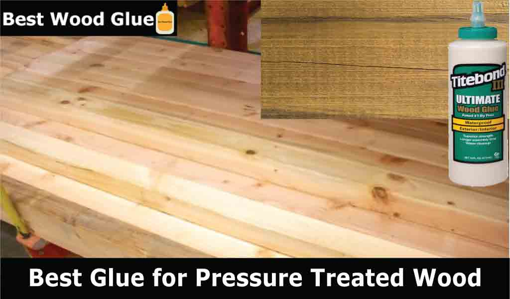 Best Glue for Pressure Treated Wood